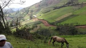 camino-vecinal-lanchecucho-dinamarca-1